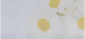 خلفيات جالكسي كتابية – صور رمزيات دينية مميزة